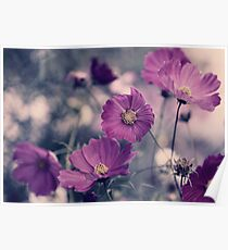 A Garden of Purple Poster