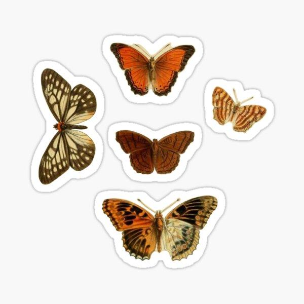 butterfly bundle Sticker