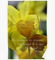 Inspirational Quote - Prosperous perspectives Poster