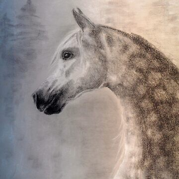 Arabian Horse - equine, equestrian, western art by TwoFriends