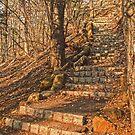 Stairway to .......... by Sally Kady