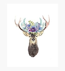 Deer with flower crown Photographic Print
