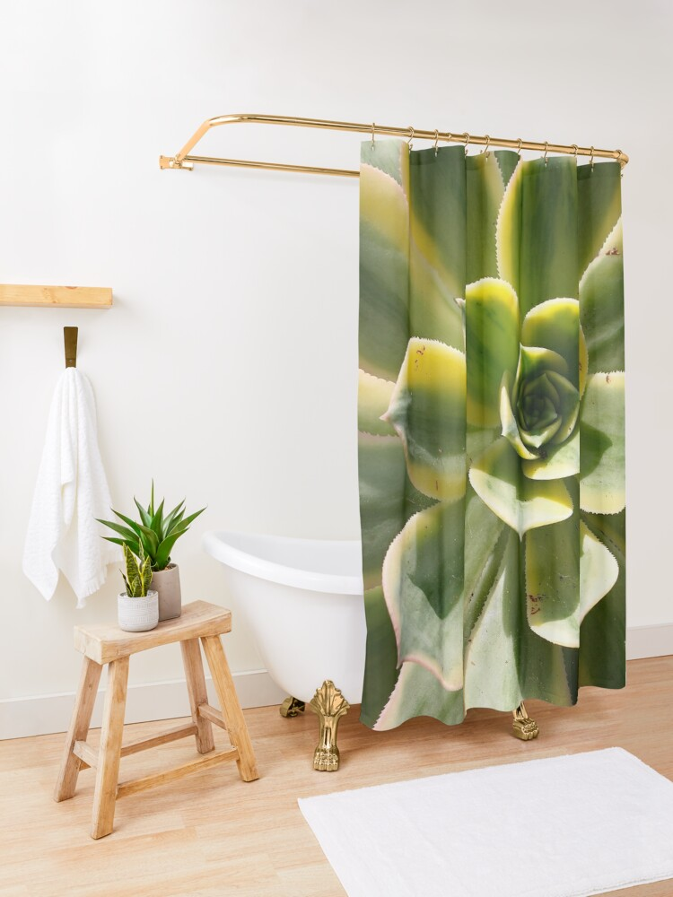 Alternate view of Echeveria In The Sun  Shower Curtain