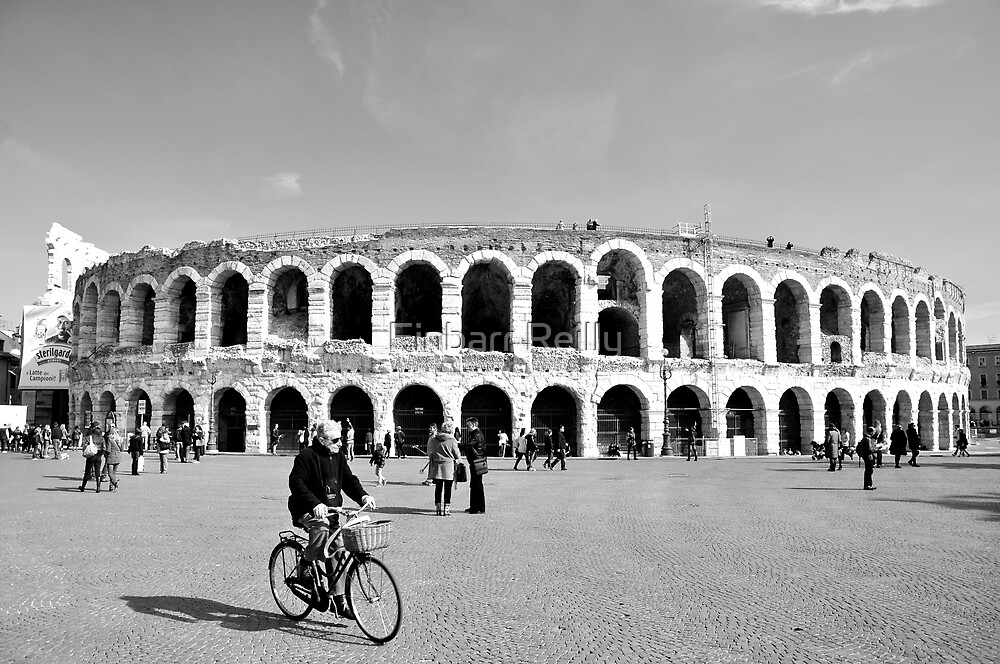 Cycling by the Arena by Finbarr Reilly