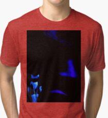 Blue Ghosts Tri-blend T-Shirt
