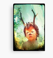 Forrest the Fawn 3 Canvas Print