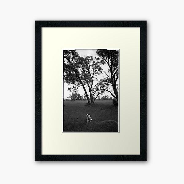 Dog in the park Framed Art Print
