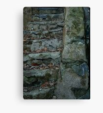 Stairs and Moss Combine to Make One Canvas Print