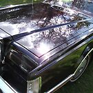 1978 Lincoln Continental Mark V by MitchConway101