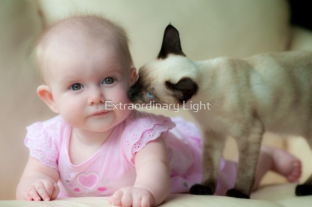 Kitten Kisses by Renee Hubbard Fine Art Photography