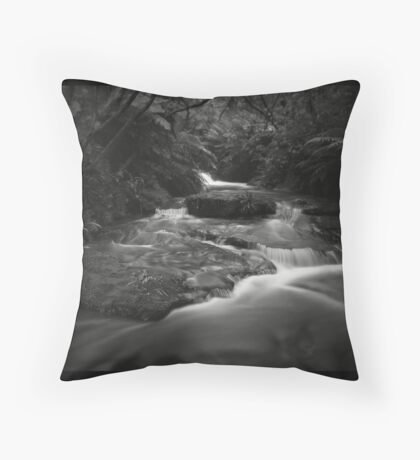 Like Water For Chocolate Throw Pillow