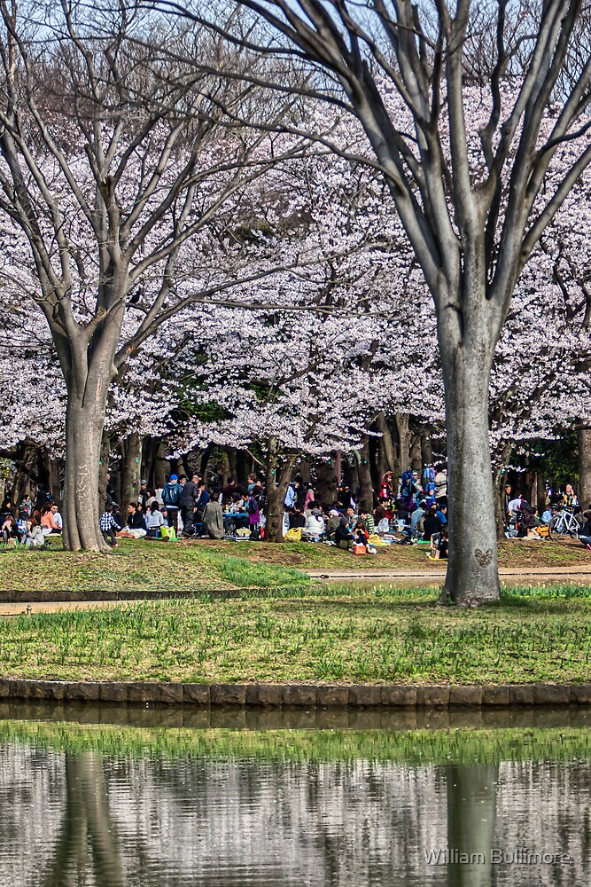 Yoyogi Park • Tokyo • Japan by William Bullimore