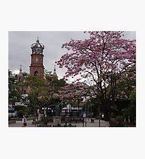 Springtide In Puerto Vallarta - Pimavera En Puerto Vallarta Photographic Print