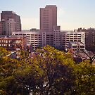 View from Bunker Hill  by sodaniechea
