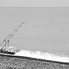 Lone fisherman at Aldeburgh by Robert Down