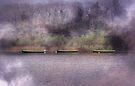 On Lough Leane by Carol Bleasdale