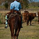 Gaucho on Horse by photograham