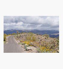 Beautiful Late Winter Desert Storm Photographic Print