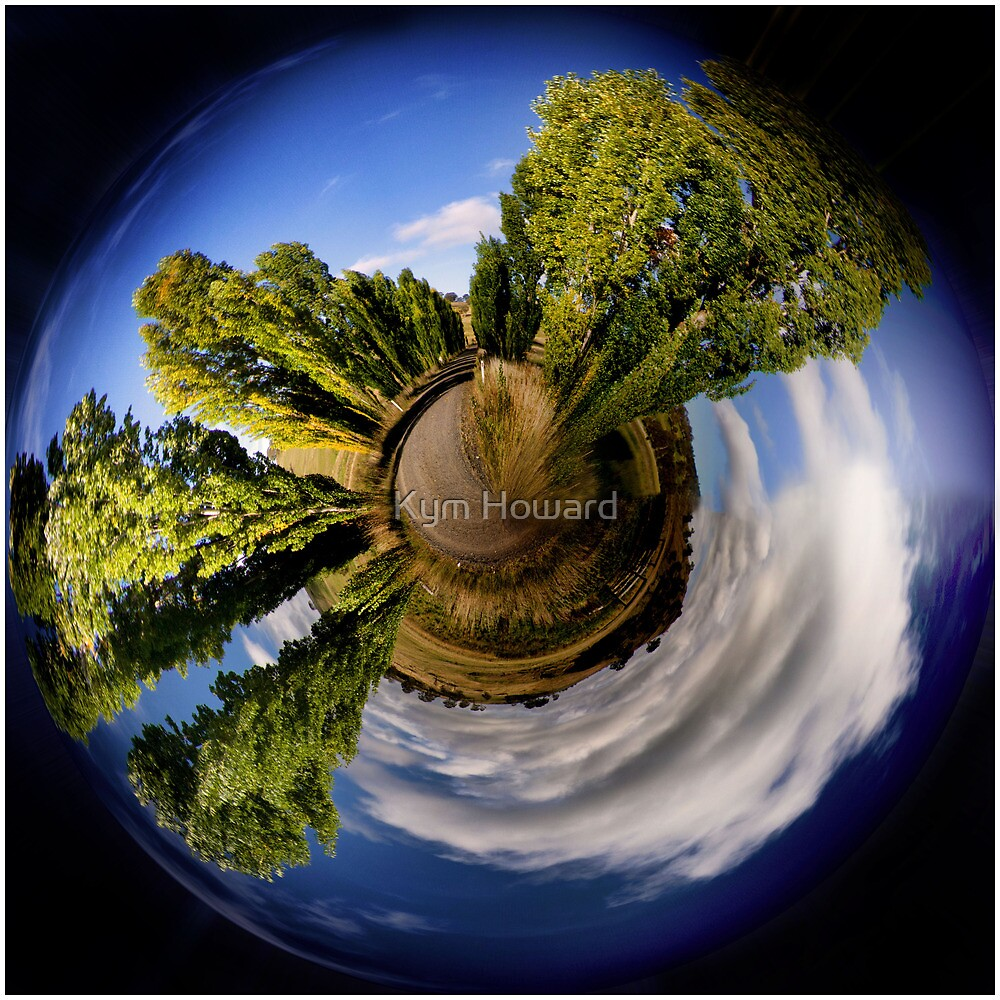Poplar Planet by Kym Howard