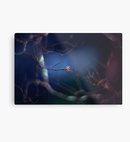 The mysterious little bud Metal Print