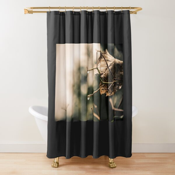 Mama Earth Shower Curtain
