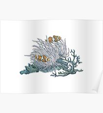 Clownfish and Anemone Poster