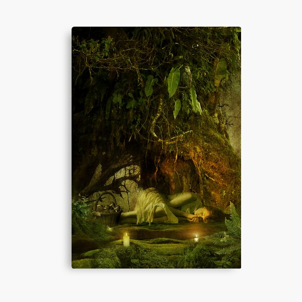 the resting tree Canvas Print