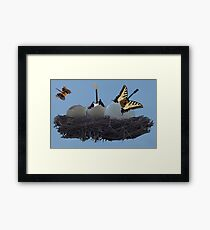 Birth Of The Guitar Framed Print