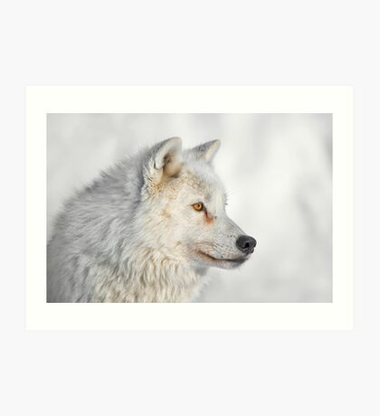 Look my Way Art Print