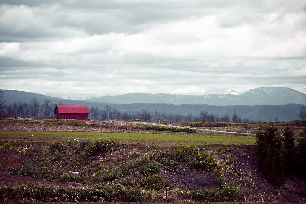 A Disrepaired Red Shack in countryside Hokkaido, Japan by holawholaw