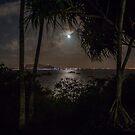 Moonlight by Gosha Davis