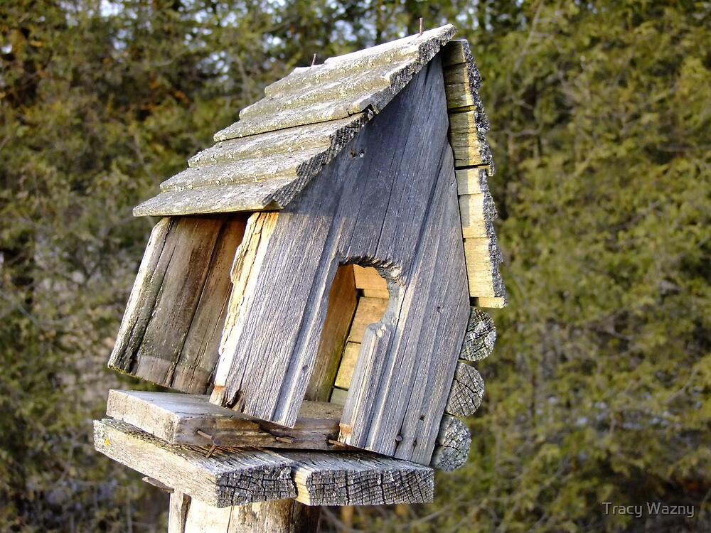 Country Home For Sale, Great Location, A Bit Of A Fixer Upper....Great Price! by Tracy Wazny