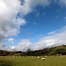 Manifold Valley near Rushley Bridge by Paul  Green
