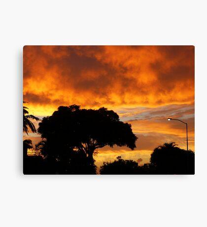 Brissie sunrise Canvas Print