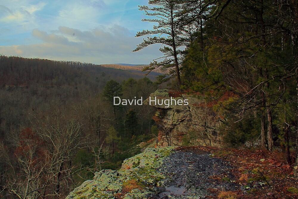 A Wildeness Somewhere by David  Hughes