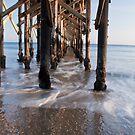 Gaviota Pier by Renee D. Miranda