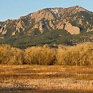 Flatirons Jay Rd View Boulder CO by Bo Insogna