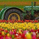 2012 Flower Calendar by Nick Boren