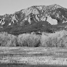 Flatirons Jay Rd View Boulder CO BW by Bo Insogna