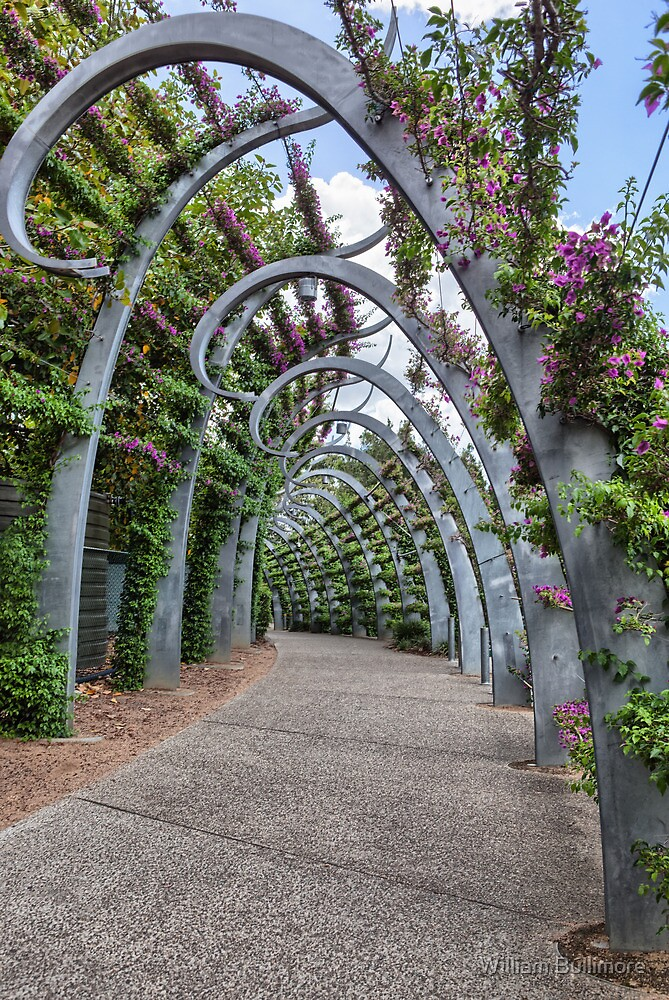 South Bank • Brisbane • Queensland by William Bullimore