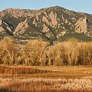 NCAR and Flatiron View Boulder Colorado by Bo Insogna