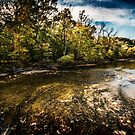 Rocky River by Theodore Black