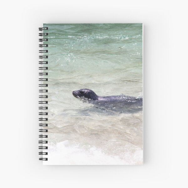 Seal Swimming Pacific Ocean Cute La Jolla California Spiral Notebook