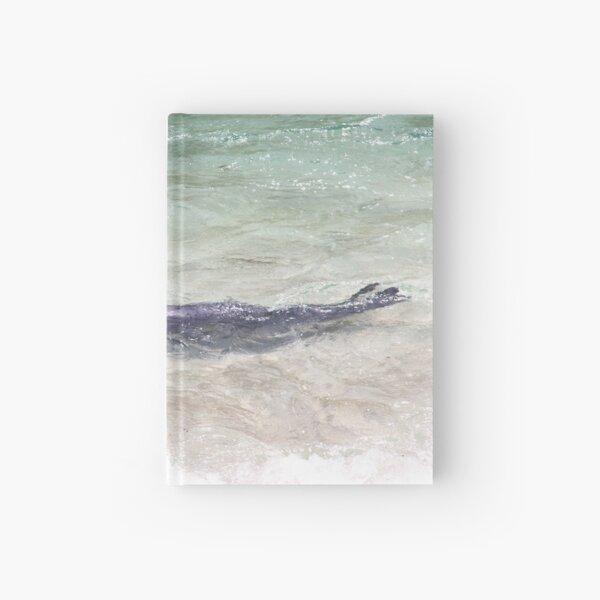 Seal Swimming Pacific Ocean Cute La Jolla California Hardcover Journal