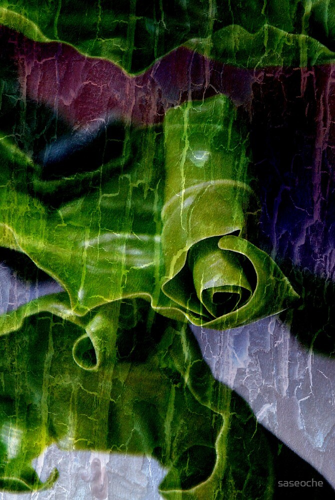 Leaves Abstract by saseoche
