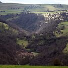 River Hamps Valley by Paul  Green