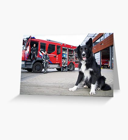Firefighter Dog Greeting Card