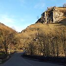 Shining Tor, Dovedale by Paul  Green