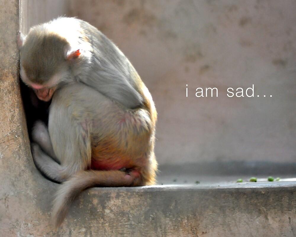 I am sad.... by Saif Zahid