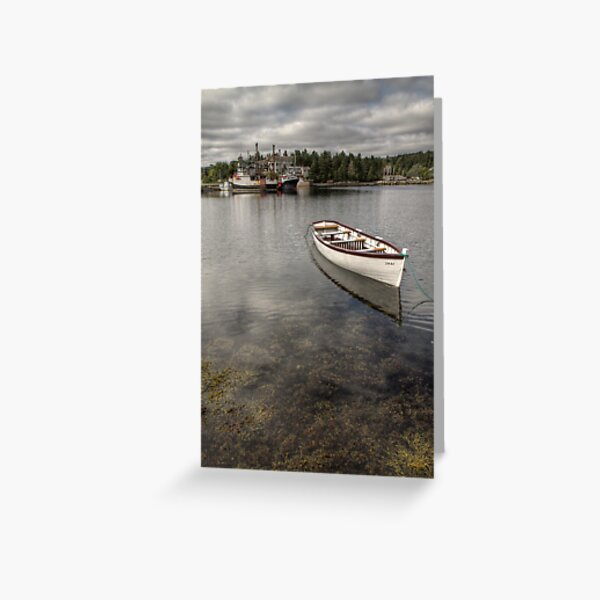 The Seaweed Coast Greeting Card